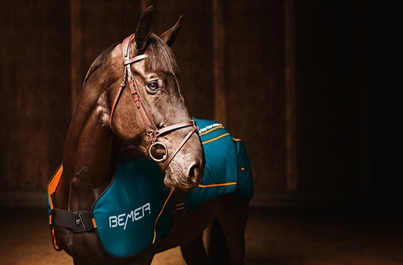 Besondere Geschenkideen aus Uelzen: BEMER Horse-Set