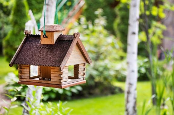 Besondere Geschenkideen aus Uelzen: Hochwertiges Vogelhaus