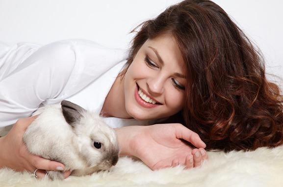 Besondere Geschenkideen aus Uelzen: Kaninchen