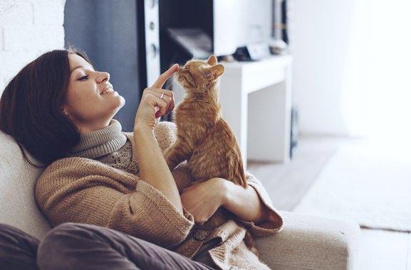 Besondere Geschenkideen aus Soltau: Katze