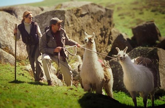 Besondere Geschenkideen aus Walsrode: Lama-Trekking
