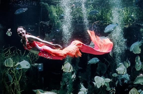 Hochwertige Geschenke für Männer und Frauen: Meerjungfrauen-Schwimmkurs
