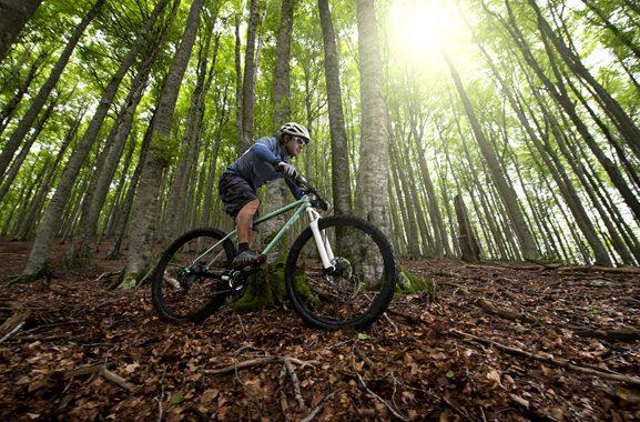 Besondere Geschenkideen aus Soltau: Mountainbike