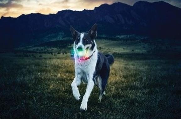 Besondere Geschenkideen aus Moosburg: Nite Ize GlowStreak LED Ball