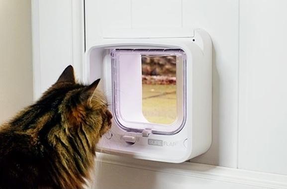 Besondere Geschenkideen aus Müllheim: Mikrochipgesteuerte Katzenklappe