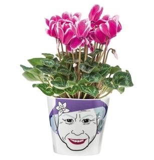 Besondere Geschenkideen in Ihrer Nähe: Blumentopf Flower Queen