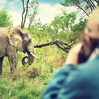 Besondere Geschenkideen aus Fürth: Abenteuer-Safari