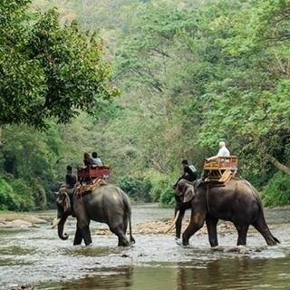 Besondere Geschenkideen aus Fürth: Abenteuerreise nach Thailand