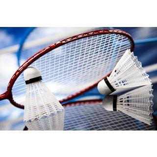 Besondere Geschenkideen aus Soltau: Badmintonzubehör
