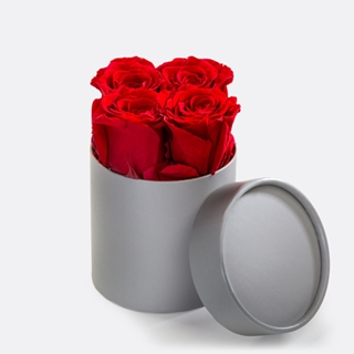 Besondere Geschenkideen aus Wolfenbüttel: Ewige Premium-Rosen in Rot mit Hutschachtel