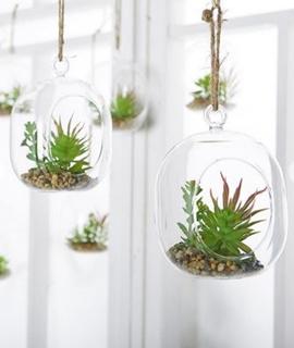 Besondere Geschenkideen aus der Region: Kunstpflanze in Glaskugel