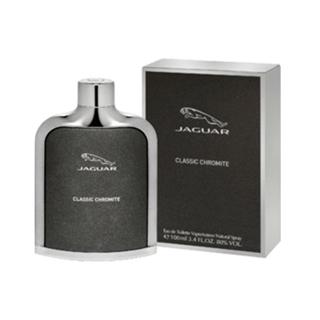 Besondere Geschenkideen aus der Region: Jaguar