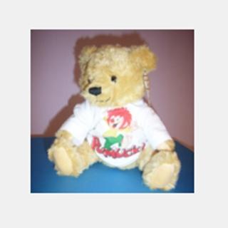 Besondere Geschenkideen aus Uelzen: Bedruckter Teddybär
