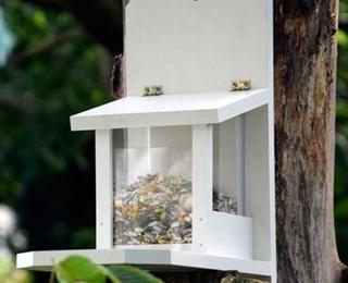 Besondere Geschenkideen in Ihrer Nähe: Eichhörnchen-Futtertstation