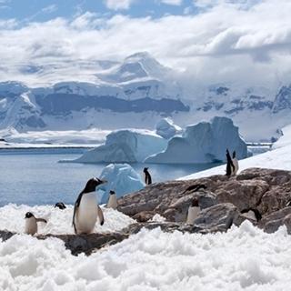 Besondere Geschenkideen aus Fürth: Reise zur Antarktis