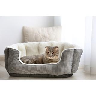 Besondere Geschenkideen aus Uelzen: Gemütliches Katzenbett