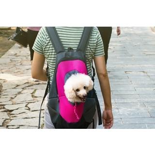 Besondere Geschenkideen aus Uelzen: Rucksack für Hunde