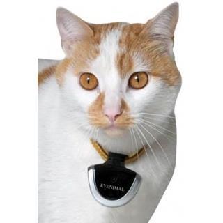 Besondere Geschenkideen in Ihrer Nähe: Tierkamera mit Tonaufnahme