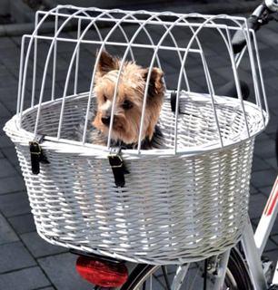 Besondere Geschenkideen aus der Region: Fahrradkorbfür Tiere