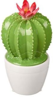 Besondere Geschenkideen in Ihrer Nähe: Dekofigur - Kaktus