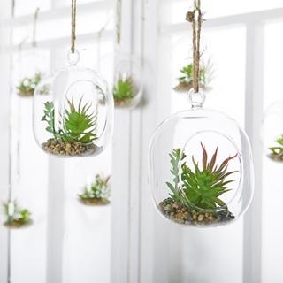 Besondere Geschenkideen in Ihrer Nähe: Kunstpflanze in Glaskugel