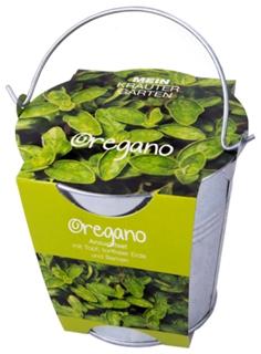 Besondere Geschenkideen in Ihrer Nähe: Oregano-Pflanzset im Zinkeimer