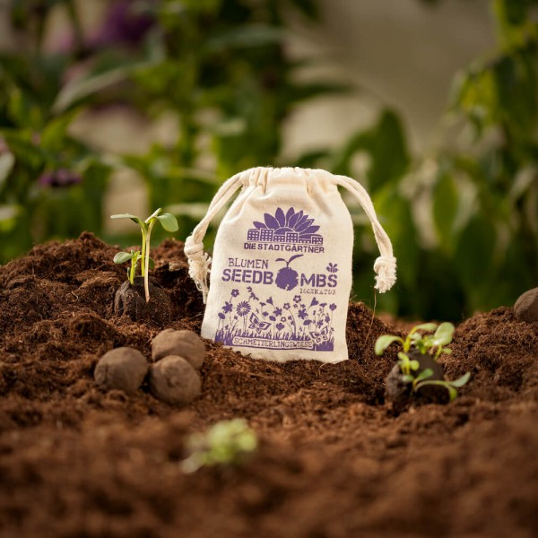 Geschenkideen aus Hannover: Samenbomben Schmetterlingswiese