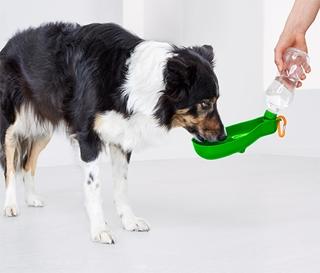 Besondere Geschenkideen aus der Region: Hunde-Trinkflasche »To go«