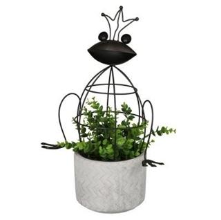 Besondere Geschenkideen in Ihrer Nähe: Blumentopf mit Frosch-Metallkäfig