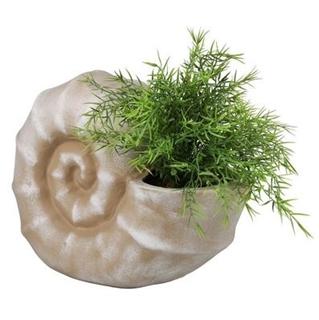 Besondere Geschenkideen in Ihrer Nähe: Keramik-Muschel zum Bepflanzen