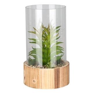 Besondere Geschenkideen in Ihrer Nähe: Kunstpflanze im Glas